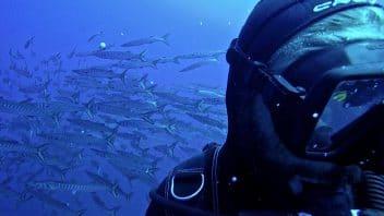Listino immersioni guidate
