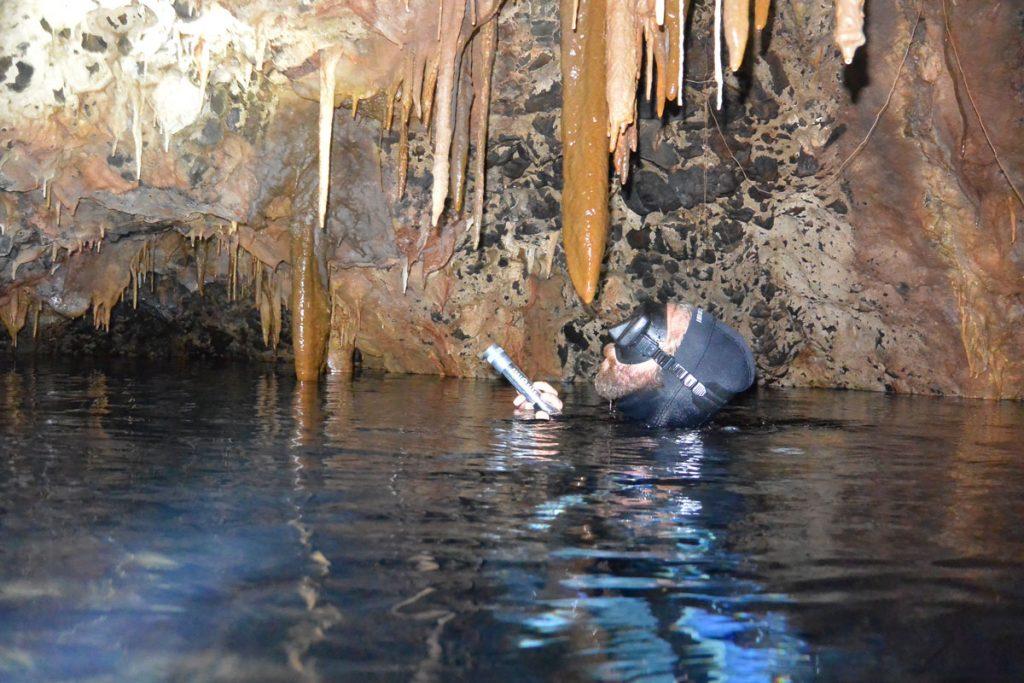 Ustica scoperta in una grotta sommersa